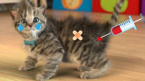 Скриншот для Little Kitten - 2