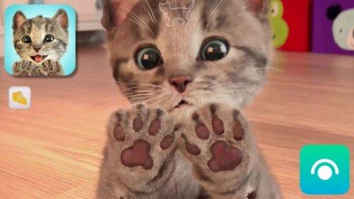 Скриншот для Little Kitten - 3